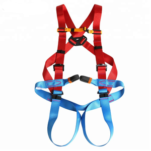 EN361 EN358 EN813 Standard High Quality Polyester Full Body Safety Harness Belt with Cheap Price